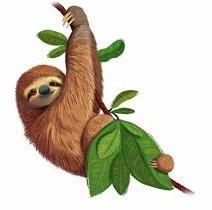 International Sloth Day