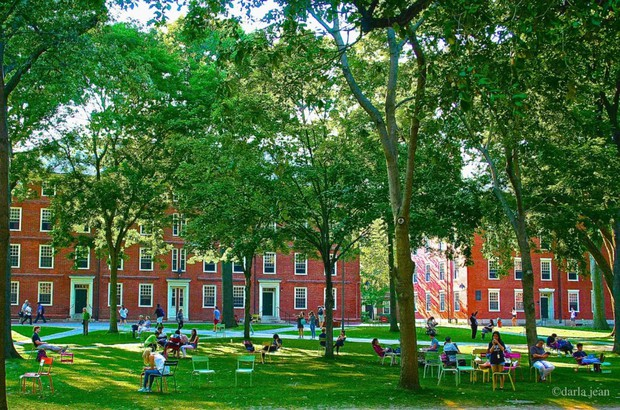 Foto por Darla Jean. Harvard yard colorful chairs