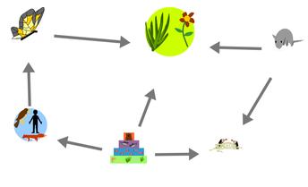 Make-A-Map