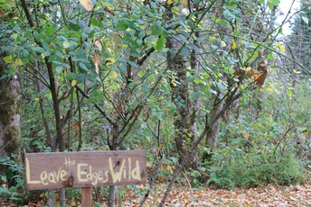 """""""leave the edges wild"""" sign in forest"""