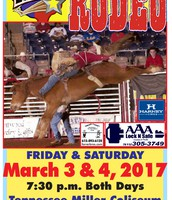 This year's Rodeo Poster