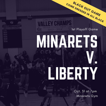 Volleyball Makes it to the Playoffs!