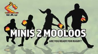 MINIS 2 MOOLOOS