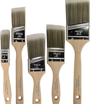 Paint Brushes (all shapes and sizes)