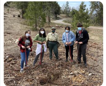 SCIA IB Learners planting 100 trees!
