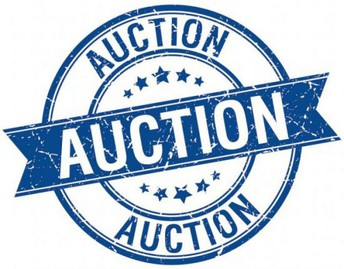 Auction 2020!