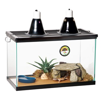 Needed: Heat Lamp and Aquarium for Gecko