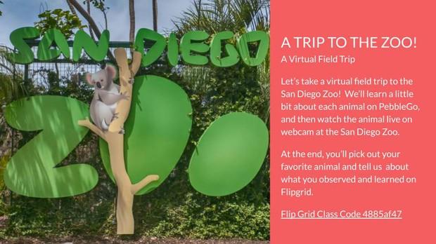 Virtual Field Trip to the San Diego Zoo Hazel 3rd Grade