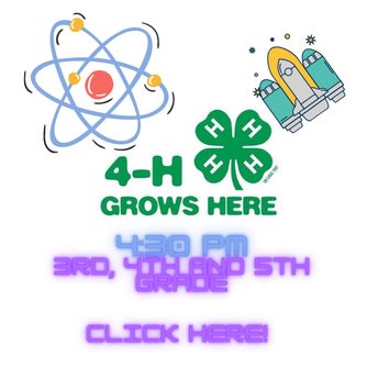 Travis County 4 H Science and Engineering - STEM