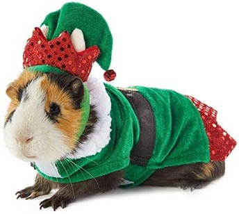Tuesday: Happy Holiday Hat/Scarf/Tie Day