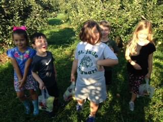Kindergarten Apple Hill Fun