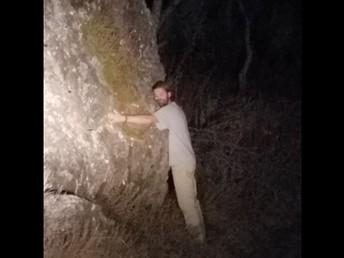 I've heard of Tree Huggers, but...