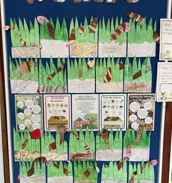 Rm 6 know all about worms! Manaaki whenua!