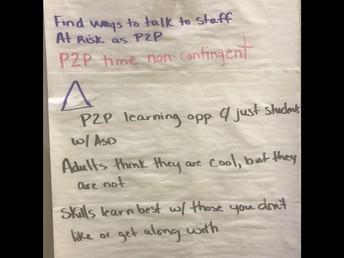 Peer to Peer Program Development