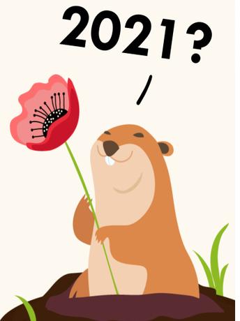 Groundhog Day's Think-Notice-Wonder