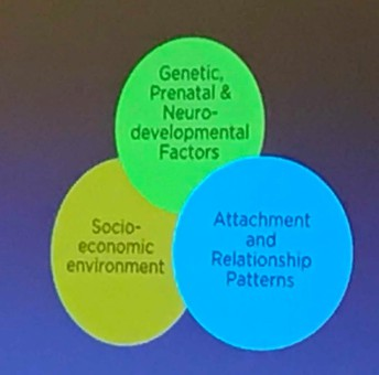 The 3-legged stool for developmental and health trajectories