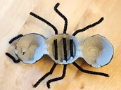 An egg carton insect