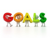 Goals for the Ambassadors for Change Program