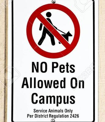 No Pets on Campus