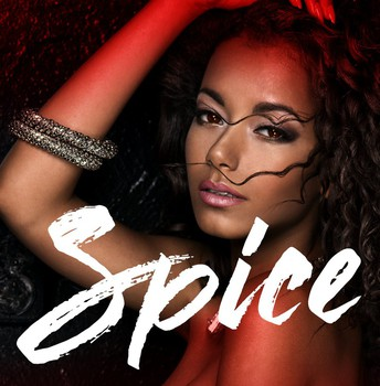 Spice Synopsis
