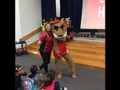 Shasta the Cougar