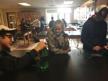 Freshmen STEM