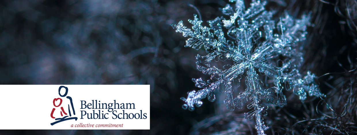 The Bellingham Schools logo shows a smaller person with a larger person reading.  The logo sits on top of a snowflake in the background.