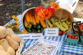 Abraxas Farmer's Market