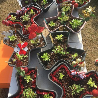 This Week's Vendor Spotlight: Kids Gardening Center!