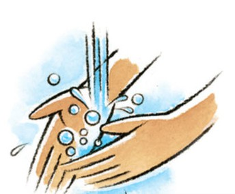 We wash hands and use hand sanitizer often.