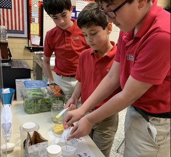 5th GRADE SCIENCE IN ACTION