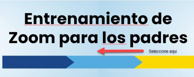 Zoom training Spanish
