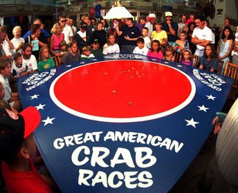 The Great American Crab Races!