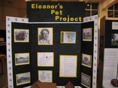 The Eastern Greenbrier Middle School Project Fair