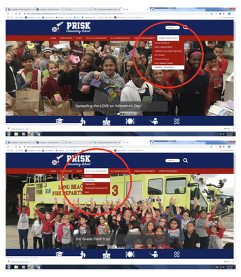 Updated Technology on the Prisk Website!