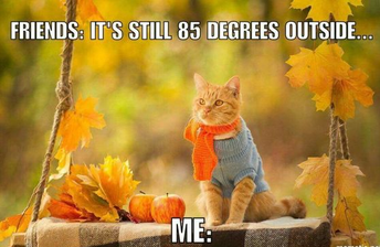 Fall Break is October 19-23