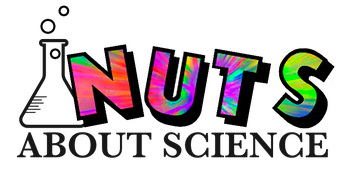 Nuts About Science - session 2