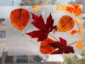 Wax Paper Leaf Art