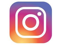Follow Us on Instagram @hfsbronxupk