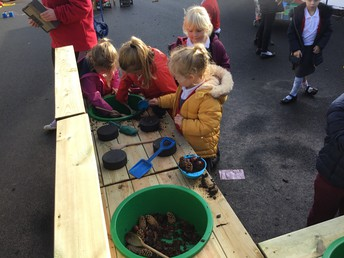 EYFS Team work to Improve Outdoor Learning