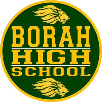 Borah High School