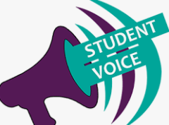 Student Feedback (Schedule and Spirit Week)