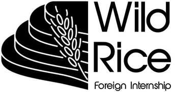 1. Wild Rice Foreign Internship