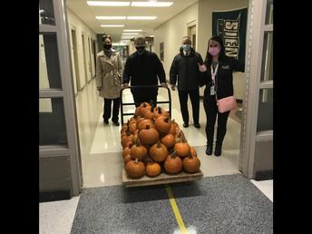 Avid Pumpkin Contest