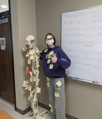 Fun with labeling the skeletal system on each other