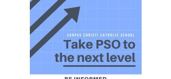 PSO Webpage and More!
