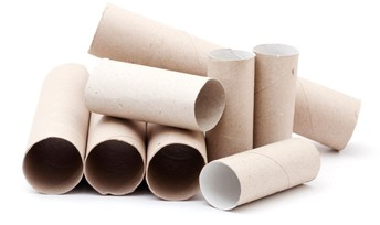 Wanted: Paper Towel and Toilet Paper Tubes