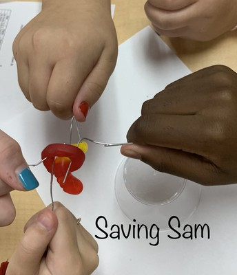 Could You Save Sam?