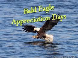 Bald Eagle Days - January 17th