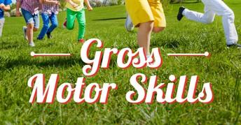 Gross Motor (PT) Resources